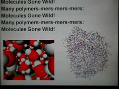 """Molecules Gone Wild (Bio Style)"" - Macromolecules Song (PPT ver. Biology Lessons, Science Biology, Food Science, Teaching Science, Life Science, Organic Molecules, Biology Classroom, School Daze"
