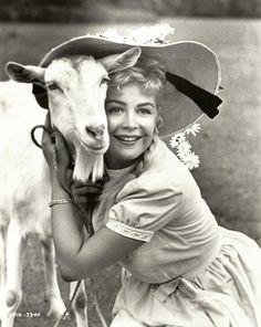 Sandra Dee & goat in Tammy Tell Me True