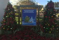#MVMCP starts tomorrow at #MagicKingdom @waltdisneyworld :) http://www.dis411.net/2015/04/08/tickets-on-sale-now-for-mickeys-not-so-scary-halloween-party-mickeys-very-merry-christmas-party-more-april-8-2015/