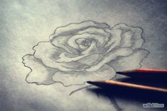 Shade a Flower Rose when Drawing With a Graphite Pencil Step 4.jpg