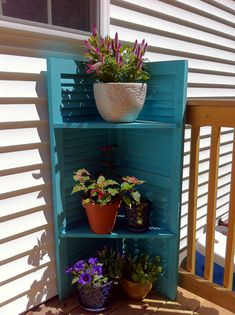 Repurpose old shutters into a shelf stand for plants