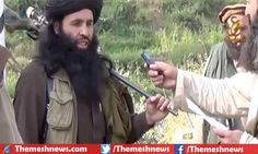 Kabul: Pakistani and American army took action against terrorists' jointly in Afghanistan and they were succeeded to kill famous militant and commander of Pakistan Tehrik-I-Taliban named Mullah Fazlullah along with son.