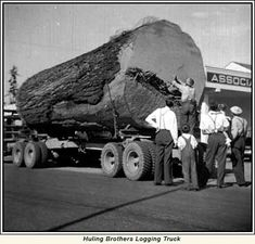Huling brothers logging truck... look at the size of that log!