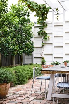 """<b>Garden </b> <a href=""""https://madebytait.com.au/"""" target=""""_Blank"""">Tait</a> 'Tidal' chairs surround a spacious 'Duo' table from <a href=""""https://www.weylandts.co.za/"""" target=""""_blank"""">Weylandts</a>. The pergola's geometric design provides privacy and shade while supporting creeping vines."""