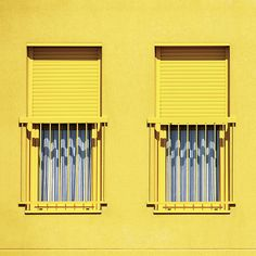 Catchy Colors: The Yellow Selections