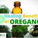 6 Healing Benefits of Oregano Oil