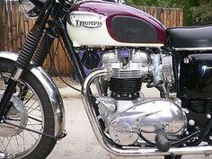 Triumph : Bonneville. Even purple looks good on a Bonnie.