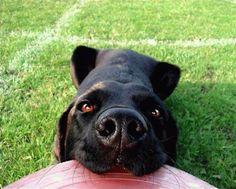 Wanna play frisbee?