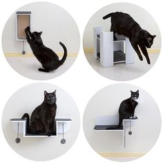 Here it is! The new Hauspanther Collection of designer cat furniture from Primetime Petz is finally on its way to the warehouse and will be shipping in early August! And this is your chance to pre-order and SAVE! Hauspanther readers can get 20% off with free shipping for a limited time! The new collection include four pieces: the…