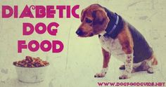 Has the vet diagnosed your dog with diabetes? If yes, take a deep breath since it is manageable. However, if you know exactly what the effects of diabetes on human beings are then you will understand what diabetics dogs go through.