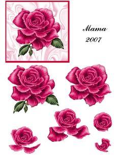 Rose on Satin