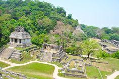 #Palenque è secondo me il sito migliore che io abbia visto in #Messico. è un…