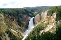 Yellowstone National Park  Bucket List for sure