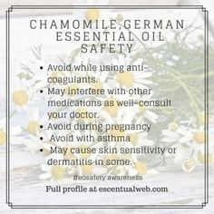 While a wonderful essential oil, some people should avoid German Chamomile oil. Learn more about this oil including safety tips. Essential Oils For Anxiety, Essential Oil Safety, Are Essential Oils Safe, Health And Fitness Articles, Health Advice, Health Fitness, Yoga Fitness, German Chamomile Essential Oil, Chamomile Oil