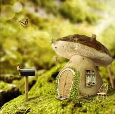 Little toadstool mushroom house thing! Fairy Dust, Fairy Land, Fairy Tales, Mushroom House, Gnome House, Smurf House, Fairy Garden Houses, Fairy Gardening, Fairy Doors