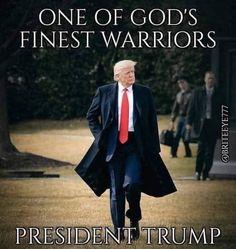 I Love America, God Bless America, Trump Is My President, Vote Trump, Vice President, Greatest Presidents, American Presidents, Trump Train, First Lady Melania