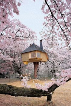 Tree House Designs - No matter whatever age you are. One look at these Amazing and Cool Tree Houses and you'll realize that you're never too old to live out your childhood dreams. Beautiful Tree Houses, Cool Tree Houses, Small Houses, Yamanashi, Fairytale Cottage, Fairytale Castle, Petits Cottages, Real Life Fairies, Tree House Designs
