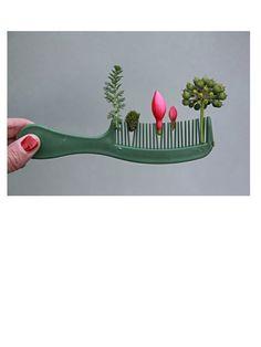 Comb Garden - by Sabine Timm