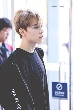 He's so pretty~♡~ Woozi, Wonwoo, Jeonghan, The8, Seungkwan, Vernon Seventeen, Seventeen Debut, Vernon Chwe, Warner Music