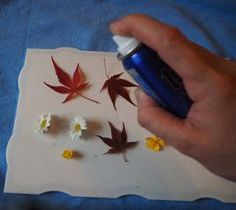 Techniques to Embed Flowers in Resin - - Techniques to Embed Flowers in Resin DIY and crafts Picture of Techniques 4 : Sealing With Hairspray Diy Resin Art, Epoxy Resin Art, Diy Resin Crafts, Uv Resin, Jewelry Crafts, Diy And Crafts, Arts And Crafts, Diy Resin On Wood, Diy Resin Projects