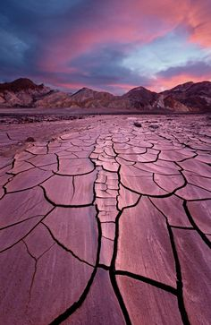 Day 309  Mud cracks near Furnace Creek in Death Valley National Park