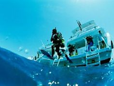 Scuba diving course in Marsa Alam, Red Sea - Egypt online tours Travel Specials, Dive Shop, Best Scuba Diving, Diving Course, Visit Egypt, Mexico Vacation, Adventure Activities, Snorkelling, Travel Channel