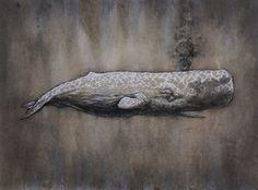 Sperm Whale (30″ x 23″) - artist Winkstink #illustration #watercolor #drawing #octopus #charcoal #art #oceanlife #coloredpencils