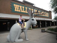 Wall Drug – that iconic pit stop along Interstate 90 in South Dakota, on the outskirts of the Badlands - we was roadside signs the day before we got there! We couldn't wait to see what it was all about.
