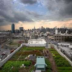 Nice illustration of how rooftop farming can work in an urban setting