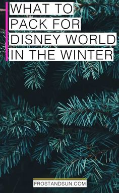 What to pack for Disney World in the Winter. Layer up for sunny days and cold nights - and don't forget your holiday gear! #disneyworld #wdw #packingtips #winter #christmas
