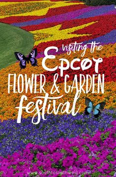 Visiting the Epcot Flower and Garden Festival at Disney World in Orlando Florida from South to Southwest Travel and Lifestyle Blog