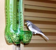 recycled crafts for kids and adults, handmade bird feeders recycling plastic bottles #recyclingforkids