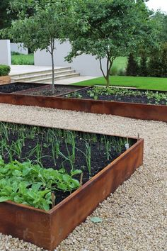 Hardscaping with Corten Steel..