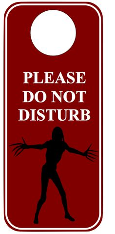 Do Not Disturb by JediArtisan.deviantart.com on @DeviantArt