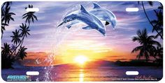 Diy diamond embroidery Dolphins Diamond mosaic animals Craft paintings rhinestones home decor Cross Stitch Kits For Needlework Dolphin Painting, Dolphin Art, Sea Dolphin, Full Hd Pictures, Scenery Pictures, Free Pictures, Diamond Drawing, 5d Diamond Painting, Cross Paintings