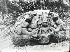 View of the north face of Zoomorph P, monolithic animal, nicknamed The Great Turtle by A.P. Maudslay. Great Plaza, Quiriguá, Guatemala. Photographed by Dr Alfred Percival Maudslay in 1890. -British Museum-