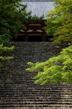 This stairs remind me of Shinsengumi!. Jingoji,a temple in Kyoto, Japan@高雄の神護寺 #日本 #京都