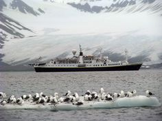 Svalbard & the North Pole (1000 Places to See Before You Die) - Svalbard