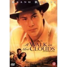 Walk in the clouds?