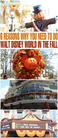 6 Reasons Why You Need to Do Walt Disney World in the Fall - take a family trip to Florida and visit the Magic Kingdom in Autumn!