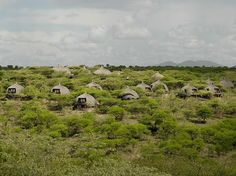 Condé Nast Traveler readers rate the top resorts and safari camps in South Africa, Botswana, Tanzania, Zimbabwe, Kenya, and Rwanda