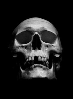 Black and grey skull Skull Pictures, Cool Pictures, Interior Simple, Skull Reference, Skull Anatomy, Tattoo Studio, Rock Outfits, Party Outfits, Desenho Tattoo