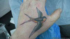 swallow tattoo designs - Google Search