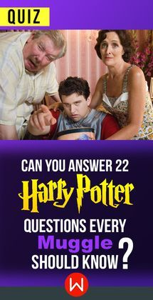 Muggles knowledge test! Only Muggles with a higher Harry Potter IQ can ace this test. How much do you really know about Harry Potter? Hermione Granger, JK Rowling, Malfoy, Hagrid, The Dursleys.