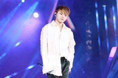 Woozi, Seventeen, Concert, Concerts