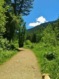 Sourdough Trail - Bozeman, MT