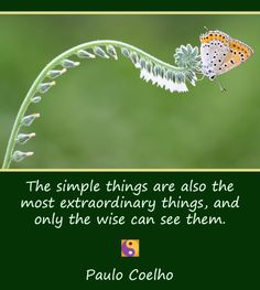 """► """"The simple things are also the most extraordinary things, and only the wise can see them."""" ~Paulo Coelho  ✽❤✽ www.newiching.com"""