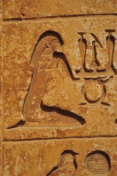 Deeply Cut Hieroglyphs  Saqqara  Pyramid uf Unas