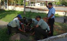 Campaña de reforestacion siembra un arbol en la ESGON