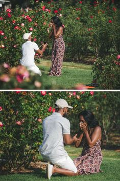 "His last name is ""Rose,"" so he asked her to become a Rose in the middle of a rose garden! This proposal is so sweet and creative. garden wedding His Last Name is ""Rose"" so Naturally He Asked her to Become a Rose in this Beautiful Rose Garden. Proposal Pictures, Engagement Pictures, Proposal Ideas, Surprise Proposal, Wedding Pictures, Wedding Proposals, Marriage Proposals, Courtney And David, Perfect Proposal"